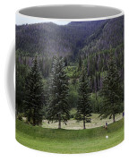 A Day At The Park In Vail Coffee Mug