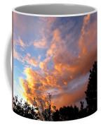 A Dramatic Summer Evening 2 Coffee Mug