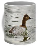 A Female Canvasback Duck  Coffee Mug