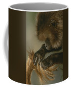 A Female Gelada, Theropithecus Gelada Coffee Mug