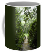 A Flooded Path At Manoa Falls Coffee Mug by Stacy Gold