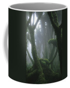 A Fog-enshrouded Rain Forest In Rwandas Coffee Mug