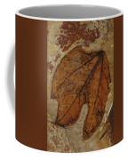 A Fossilized  Sassafras Leaf Coffee Mug