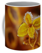A Frosted Plant Coffee Mug
