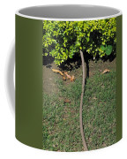 A Garden Water Pipe Emerging From Within A Hedge Coffee Mug