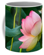 A Gentle Unravelling Coffee Mug