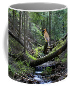 A Giant Cedar Waxwing On Mt Spokane Coffee Mug
