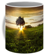 A Golden Evening  Coffee Mug