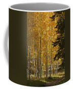 A Golden Trail Coffee Mug