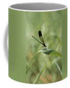 A Graceful Dragonfly Sitting On A Blade Coffee Mug