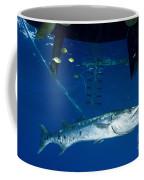 A Great Barracuda Beneath A Boat, Kimbe Coffee Mug
