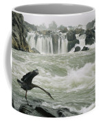 A Great Blue Heron Stretches Its Neck Coffee Mug