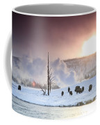A Group Of Bison Feeding In The Snow Coffee Mug by Drew Rush
