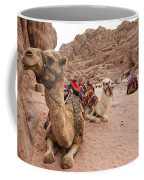 A Group Of Camels Sit Patiently Coffee Mug by Taylor S. Kennedy