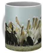 A Group Of Eastern White Pelicans Coffee Mug by Klaus Nigge