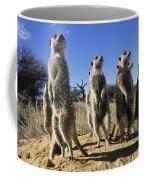 A Group Of Meerkats Standing Guard Coffee Mug