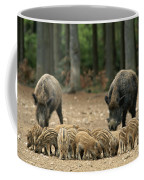 A Group Of Young Wild Boars Nose Coffee Mug
