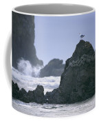 A Gull Sits On A Rock At Cannon Beach Coffee Mug