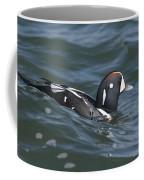 A Harlequin Duck Surfing Coffee Mug