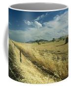 A Hay Field With Bales Sitting Coffee Mug