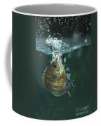 A Hooked Bluegill Coffee Mug