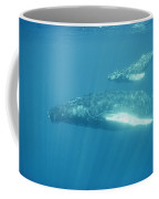 A Humpback Mother Swims With Her Calf Coffee Mug