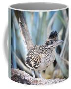A Juvenile Greater Roadrunner  Coffee Mug