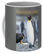 A King Penguin Stands On Pebbled Ground Coffee Mug