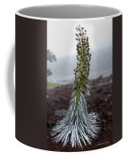 A Kiss Before Dying Coffee Mug