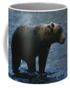 A Kodiak Brown Bear Hunts For Fish Coffee Mug by George F. Mobley