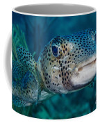A Large Spotted Pufferfish Coffee Mug