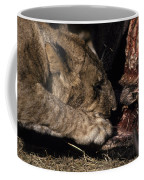 A Lion Feeding On The Carcass Of A Cape Coffee Mug