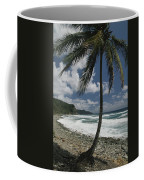 A Lone Palm Tree Grows From The Rocky Coffee Mug by Michael Melford