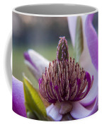 A Look Inside Coffee Mug