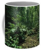 A Lush Woodland View In Papua New Coffee Mug by Klaus Nigge