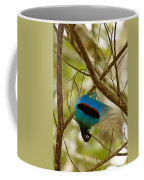 A Male Blue Bird Of Paradise Performing Coffee Mug by Tim Laman