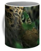 A Male Leopard Dozes Coffee Mug