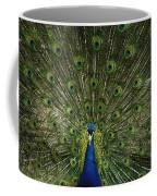 A Male Peacock Displays His Feathers Coffee Mug