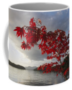 A Maple Tree In Fall Foliage Frames Coffee Mug