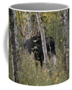 A Moose Alces Alces Americana With An Coffee Mug
