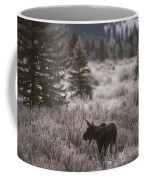 A Moose In A Frost-covered Field, Grand Coffee Mug