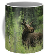 A Moose Stands In Tall Grass Coffee Mug