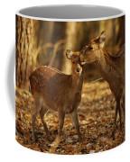 A Mother And Fawn Sika Deer Coffee Mug