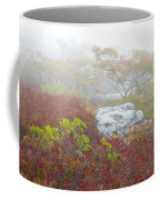 A Natural Garden At Dolly Sods Wilderness Area Coffee Mug