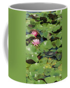 A Painted Turtle Rests On A Water Lily Coffee Mug