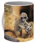 A Pair Of Four-week-old Meerkat Pups Coffee Mug