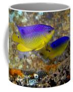 A Pair Of Juvenile Cocoa Damselfish Coffee Mug