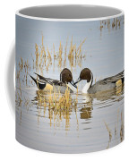 A Pair Of Northern Pintail Ducks  Coffee Mug
