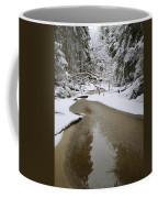 A Partially Frozen Stream Runs Coffee Mug