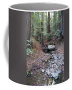 A Peaceful Redwood Creek On Mt Tamalpais Coffee Mug